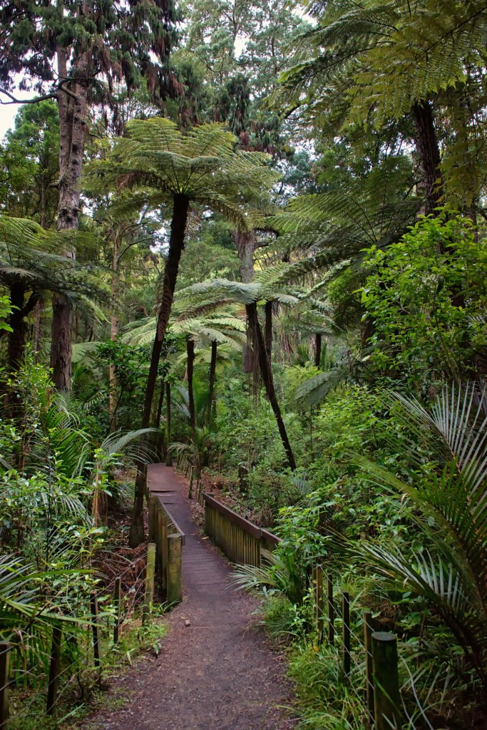 The entrance to the bush walkway