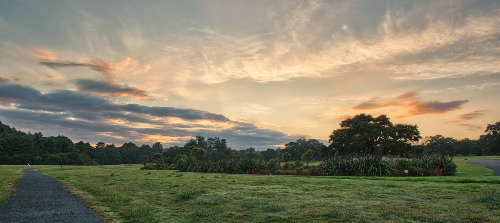 Sunrise and clouds at Auckland's Botanic Gardens