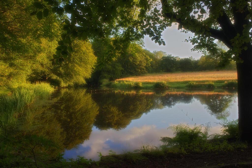 Old Hall Lane Lake
